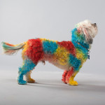 We Give Up, Go Ahead And Spray Paint Your Dog
